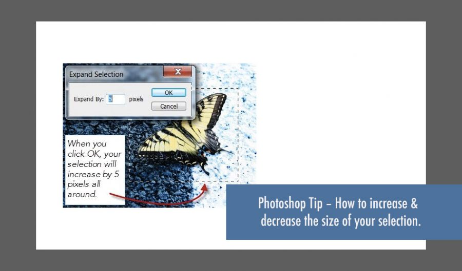 How to increase and decrease the size of a selection in photoshop