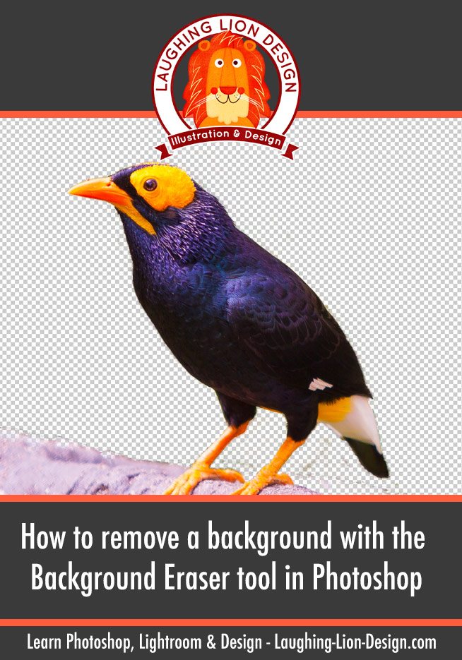 How To Use The Background Eraser In Photoshop To Easily Remove A