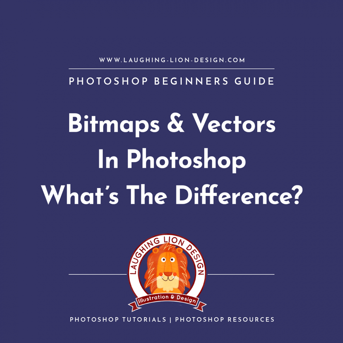 Beginners Guide To Vector Images And Bitmaps In Photoshop Laughing-Lion-Design