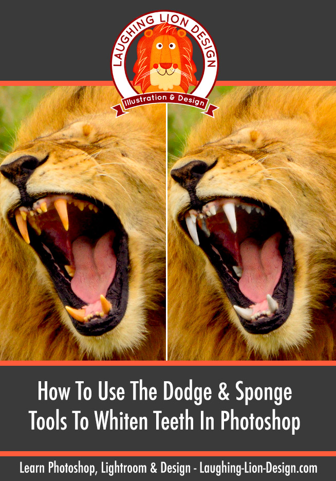 How-To-Whiten-Teeth-With-Dodge-And-Sponge-In-Photoshop